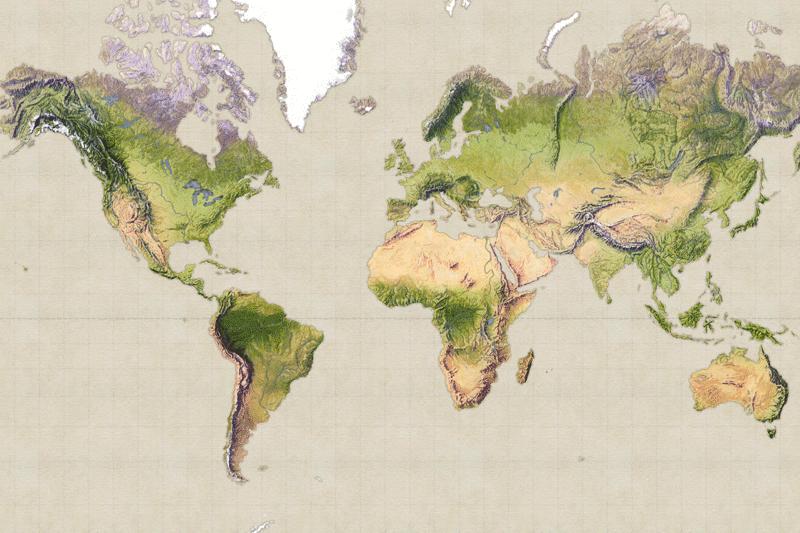 Read more about the article Lược sử cây cà phê, hành trình chinh phục thế giới