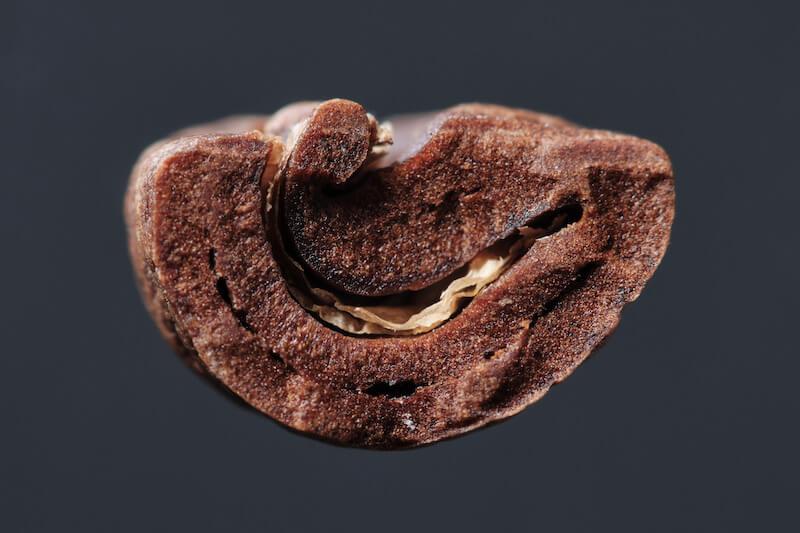 Hiểu về mật độ hạt (coffee bean density) | PrimeCoffee